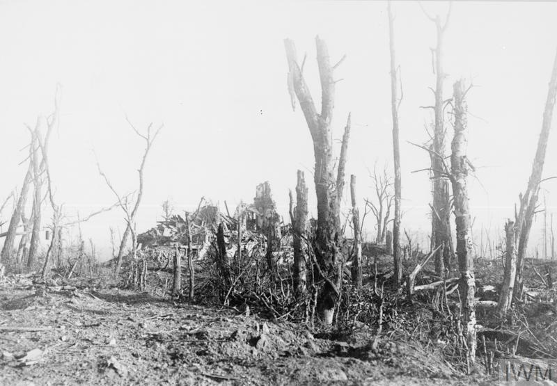 Ruins of Polderhoek Chateau 1917 - C. IWM (Q 42251)