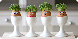Egg Cress Head