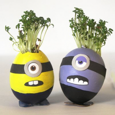 Minion Cress Head